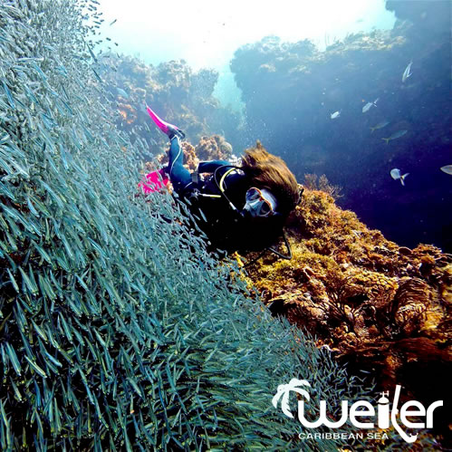 Curso de Buceo Advanced Open Water